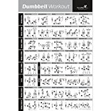 DUMBBELL EXERCISE POSTER LAMINATED - Workout Strength Training Chart - Build Muscle, Tone & Tighten - Home Gym Weight Lifting Routine - Body Building Guide w/ Free Weights & Resistance - 20
