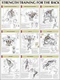 Strength Training for the Back Poster